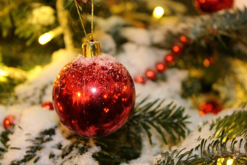 在圣诞树的圣诞节装饰在红色和金子上色撒布与光,特写镜头 库存照片