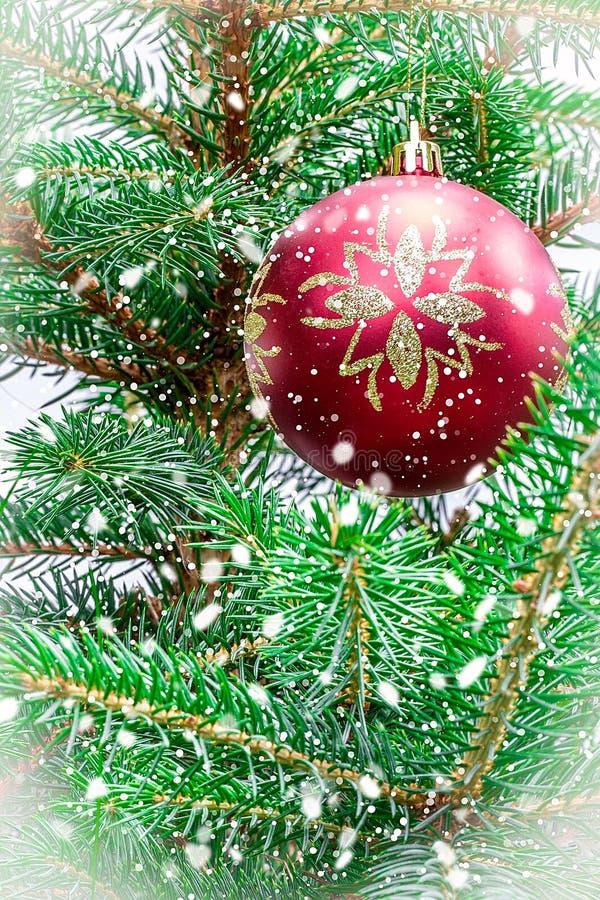 Download 在圣诞树的玩具 库存图片. 图片 包括有 云杉, brander, 庆祝, 杉木, 装饰, 关闭, 颜色 - 59109785