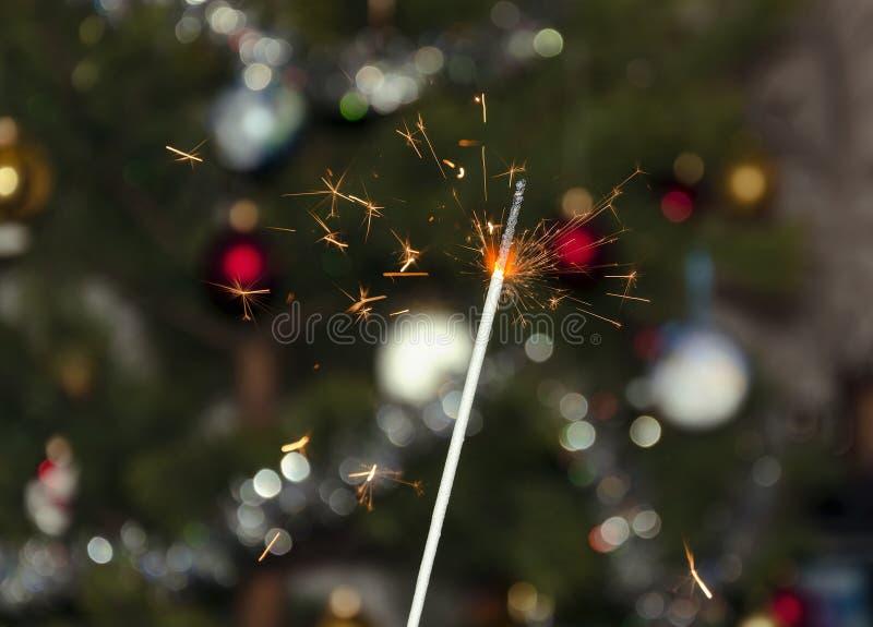 在圣诞树的背景的孟加拉火 免版税库存照片