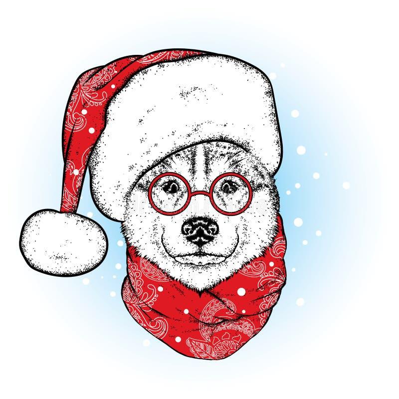 在圣诞老人` s帽子和围巾的一条美丽的狗 antioch 也corel凹道例证向量 在衣裳和辅助部件的纯血统小狗 爱斯基摩或狼 n 库存例证