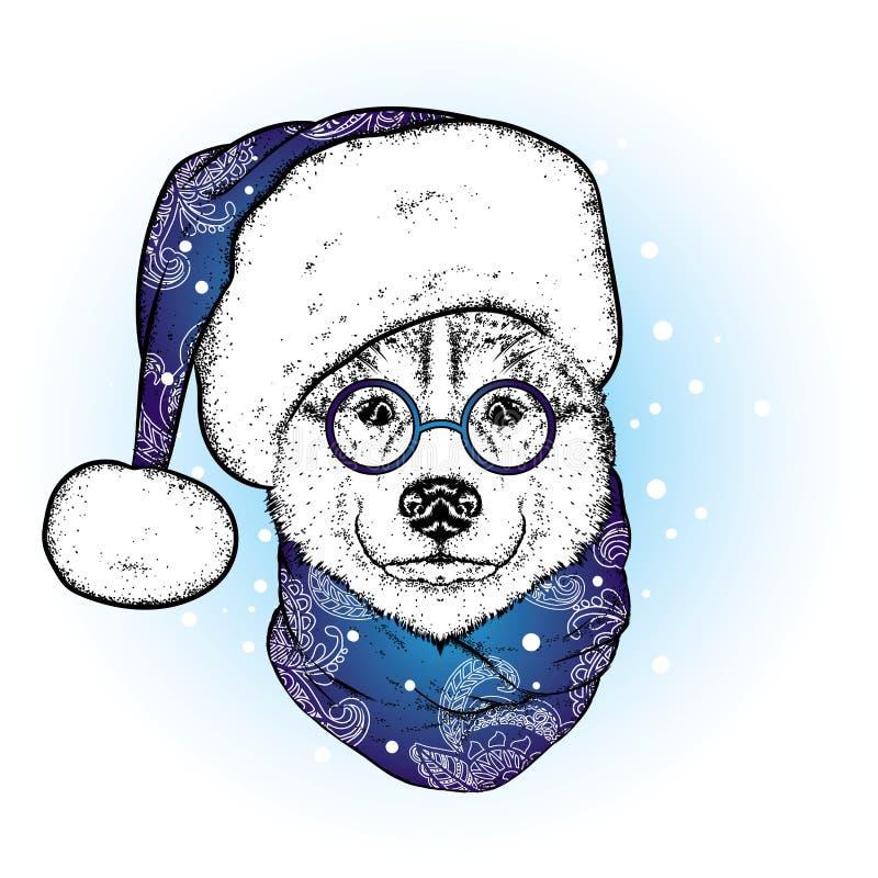 在圣诞老人` s帽子和围巾的一条美丽的狗 antioch 也corel凹道例证向量 在衣裳和辅助部件的纯血统小狗 爱斯基摩或狼 n 皇族释放例证