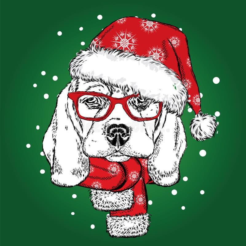 在圣诞节帽子和围巾的逗人喜爱的小狗 也corel凹道例证向量 额嘴 新年` s和圣诞节 皇族释放例证