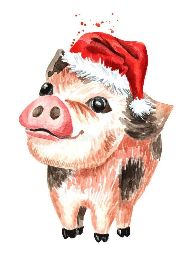 在圣诞节盖帽的一点逗人喜爱的滑稽的茶杯微型猪 新的符号年 水彩手拉的例证,隔绝在w 皇族释放例证