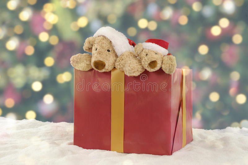 在圣诞节礼物的两个玩具熊 图库摄影