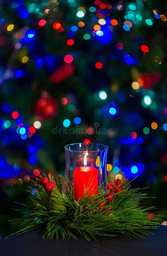 在圣诞节花圈中间的一个灼烧的红色蜡烛反对在圣诞树的黑暗的背景 库存照片