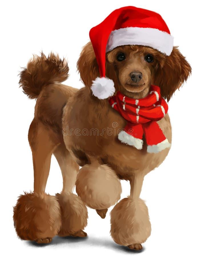 在圣诞节衣裳的长卷毛狗 向量例证