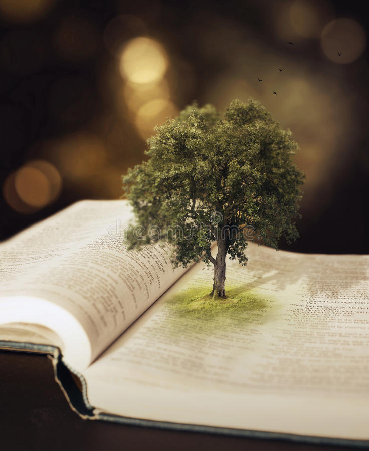 在圣经的树。 图库摄影