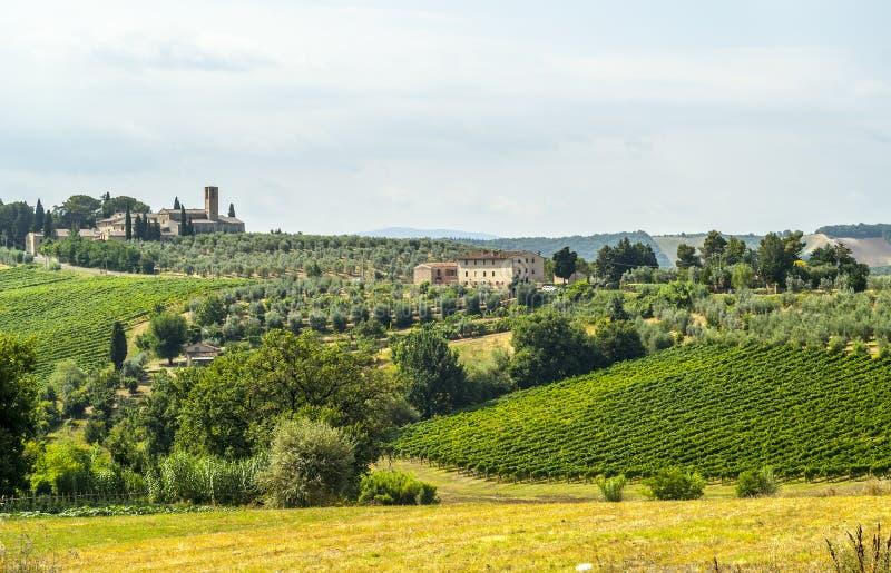 在圣Gimignano (托斯卡纳)附近的风景 库存图片