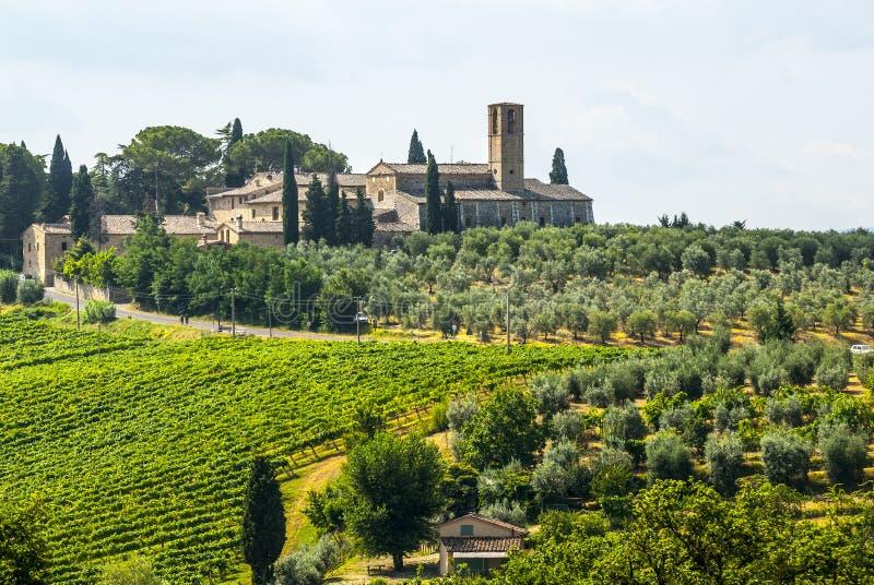 在圣Gimignano (托斯卡纳)附近的风景 免版税图库摄影