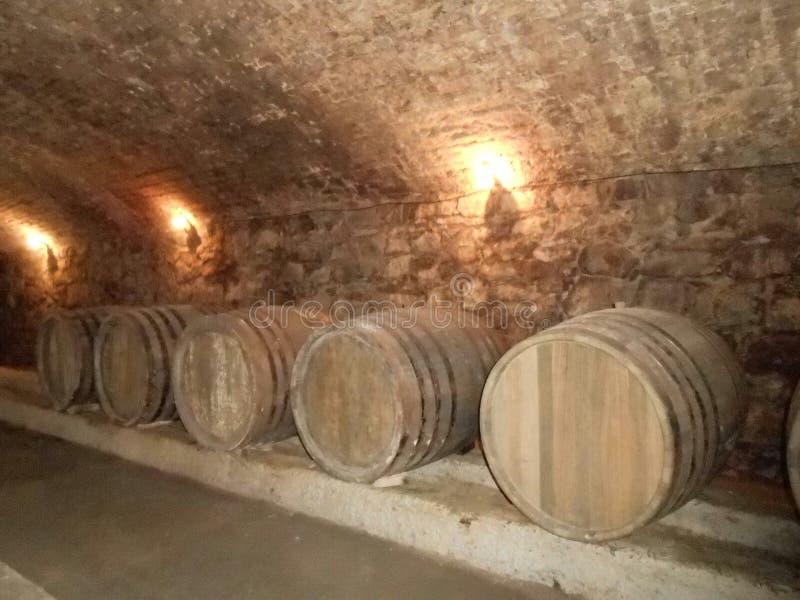 在地下室的葡萄酒桶 免版税库存图片