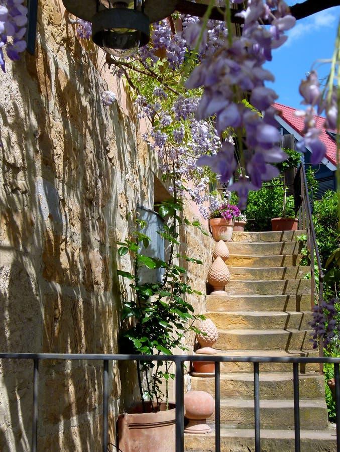 在地中海天才的老保管妥当的房子细节与黄色自然石楼梯和开花的紫藤 免版税库存照片