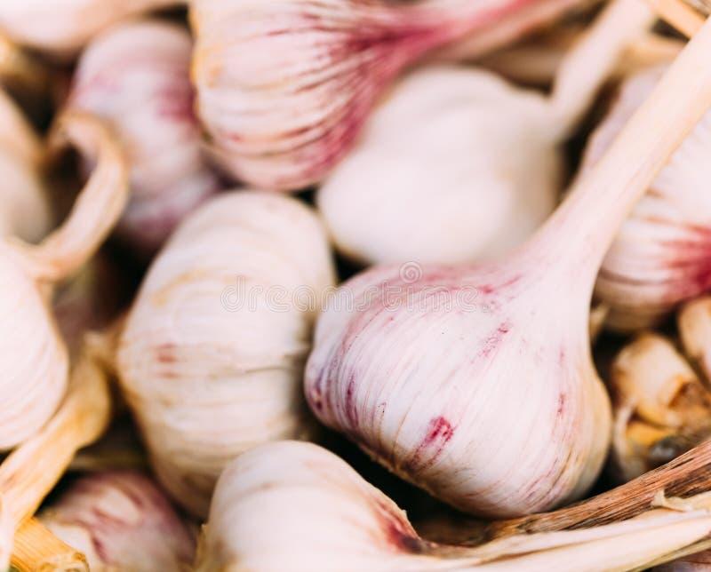 在地方农业蔬菜批发市场的新鲜的有机未加工的大蒜 库存照片