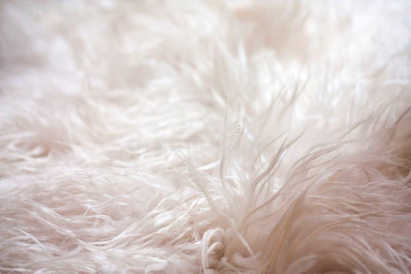 在地板上的软的地毯。纹理 免版税库存照片