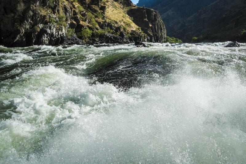 在地狱峡谷,爱达荷的怀特沃特急流 库存图片
