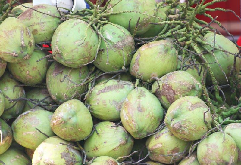 在地面上的被堆积的椰子 免版税库存图片