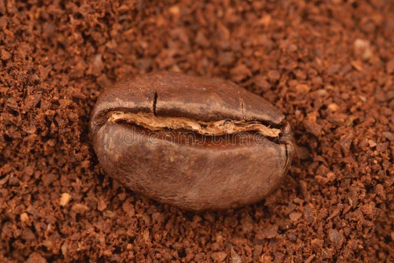 在地面coffe boakground的Coffe五谷  免版税库存照片