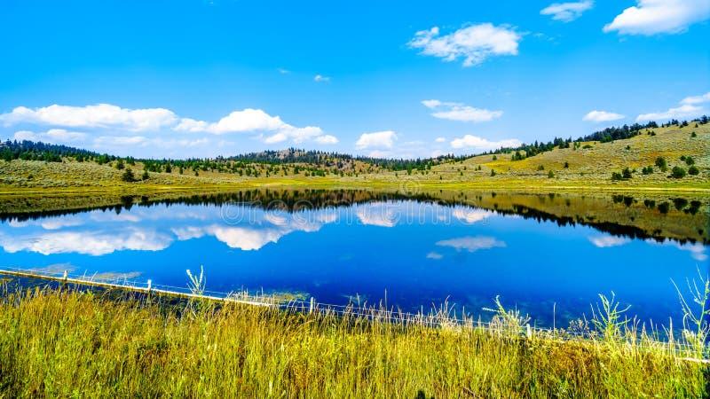 在坎卢普斯,不列颠哥伦比亚省,加拿大附近的Wallender湖 库存照片