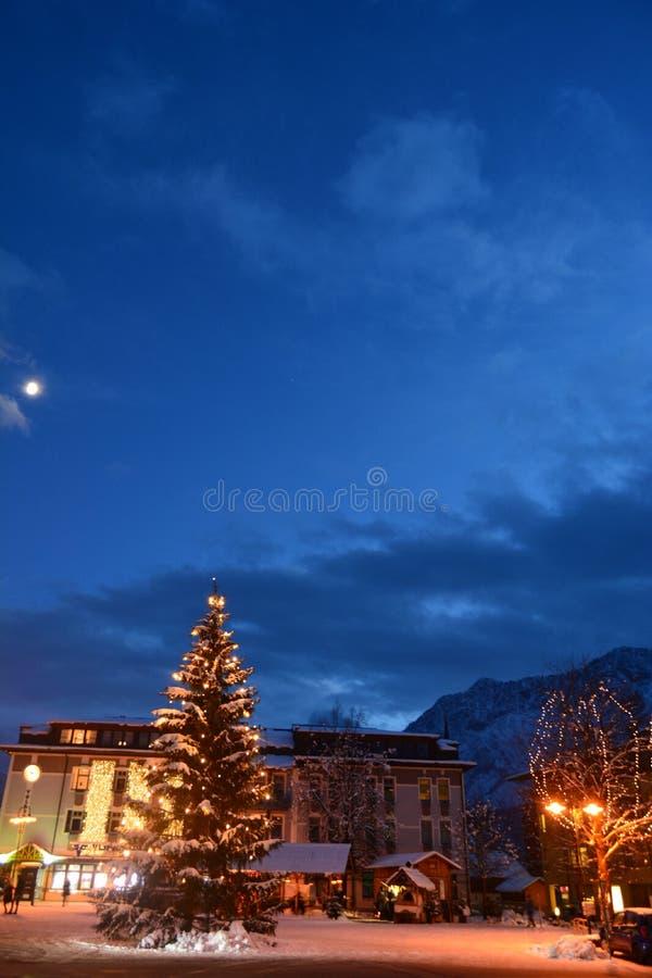在坏Gosern中心正方形,Hallstatt,奥地利的巨大的圣诞树 图库摄影