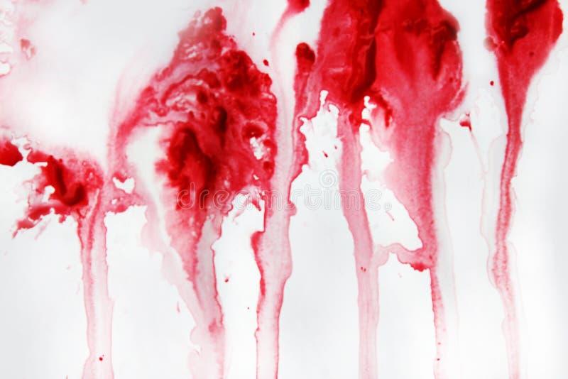 在坚实白色背景水彩的难看的东西红色 摘要 照片 皇族释放例证