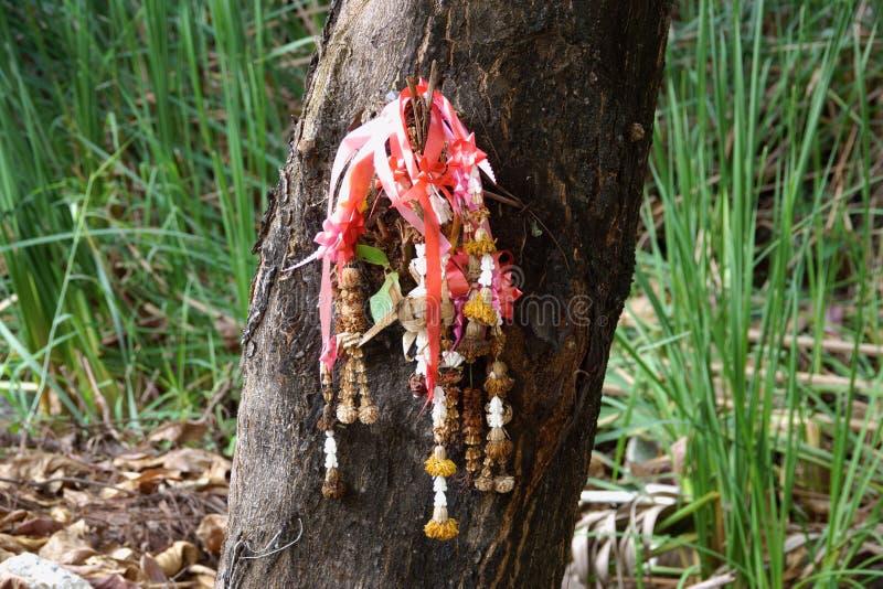 在垂悬在树的泰国样式的干万寿菊花诗歌选 免版税库存照片