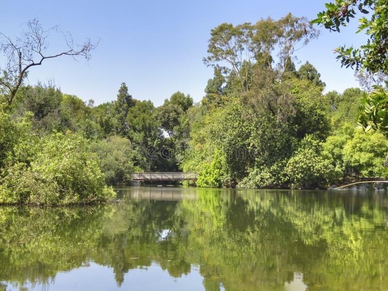 在埃尔多拉多公园湖的桥梁 免版税图库摄影