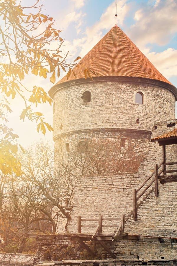 在城堡墙壁上的看法有塔的在老镇塔林,爱沙尼亚 库存照片