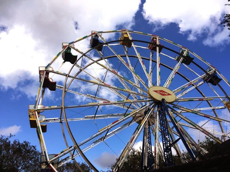 在城市公园的弗累斯大转轮 免版税库存图片