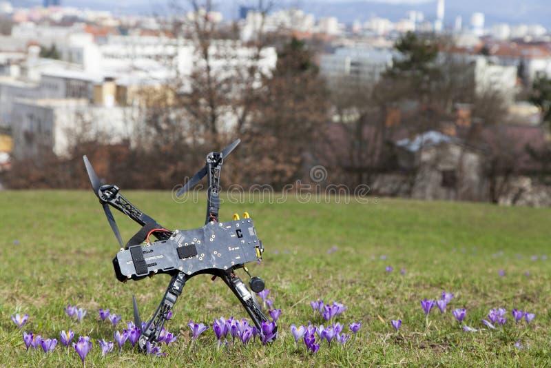 在城市公园碰撞的寄生虫quadcopter 图库摄影
