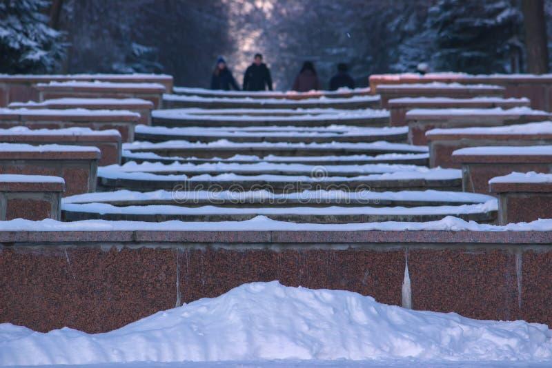 在城市公园胡同的冬天风景  库存照片