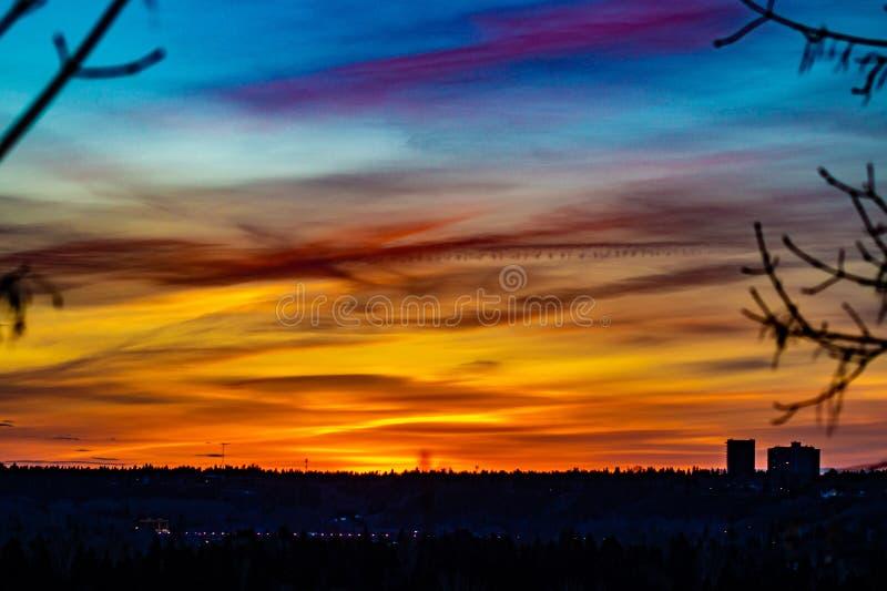 在城市地平线,埃德蒙顿,阿尔伯塔,加拿大的美好的日落 免版税库存图片