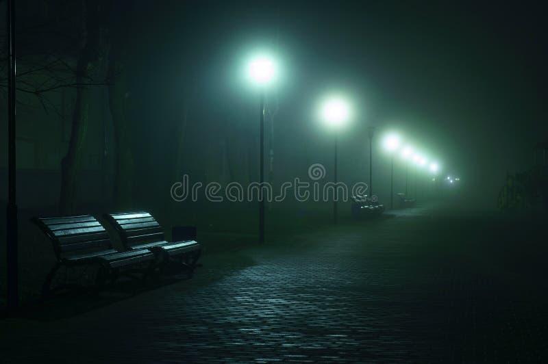 在城市大道,大道的空的benchs 在有雾的街道的胡同在晚上 免版税库存照片