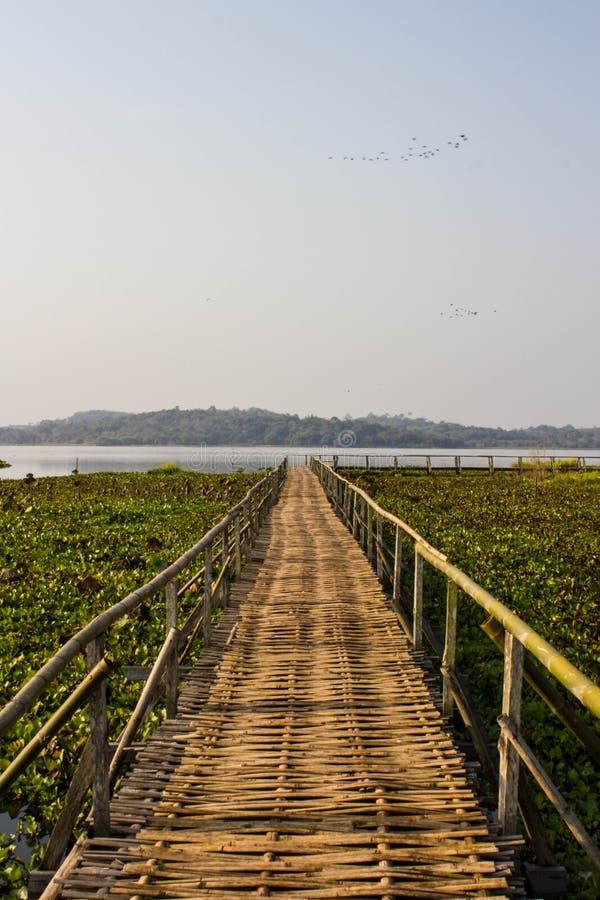 在城镇神志正常的湖的竹桥梁 免版税库存照片