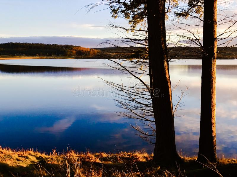 在基尔德水库的金黄小时,诺森伯兰角公园,英国 图库摄影