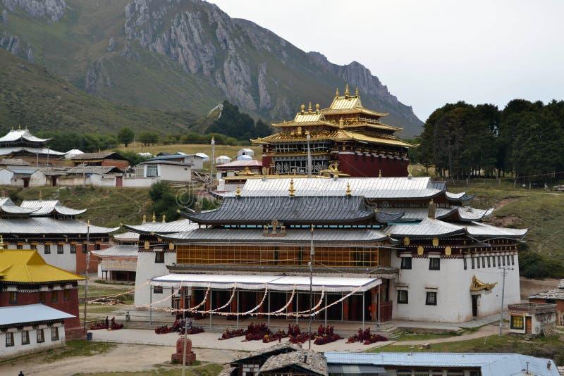在基尔提Gompa修道院附近的生活在Langmusi, Amdo西藏, C 图库摄影