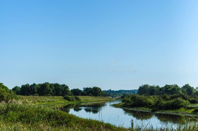 在堆和绿色植被中间的一条小河形成的领域河 库存图片