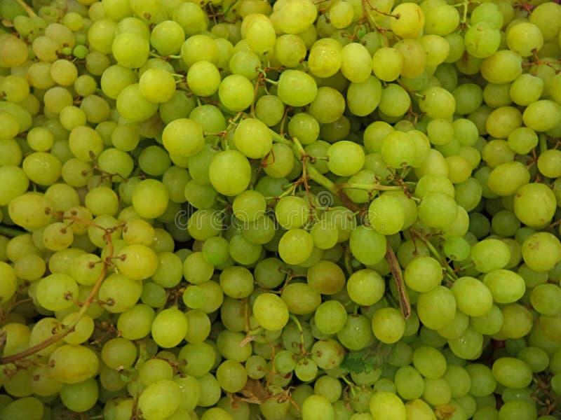 在堆堆的束成熟新鲜的绿色葡萄 库存图片