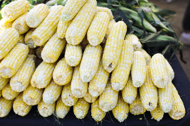 在堆的明亮的黄色玉米在农夫市场上 库存照片