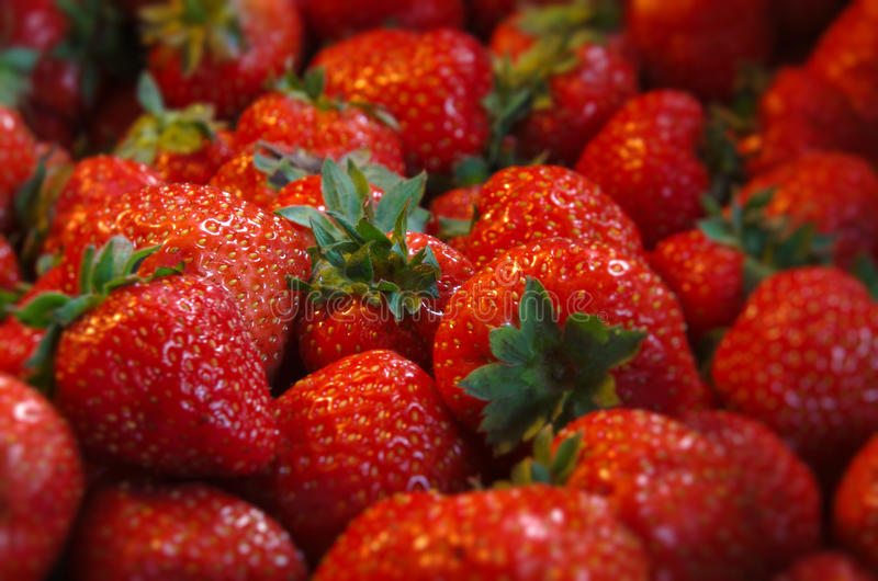 在堆的许多草莓 库存照片