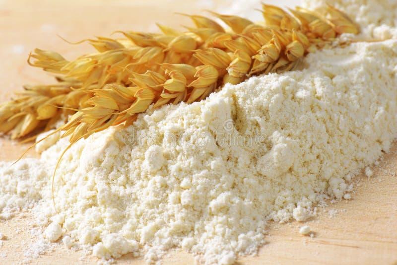 在堆的麦子耳朵面粉 图库摄影