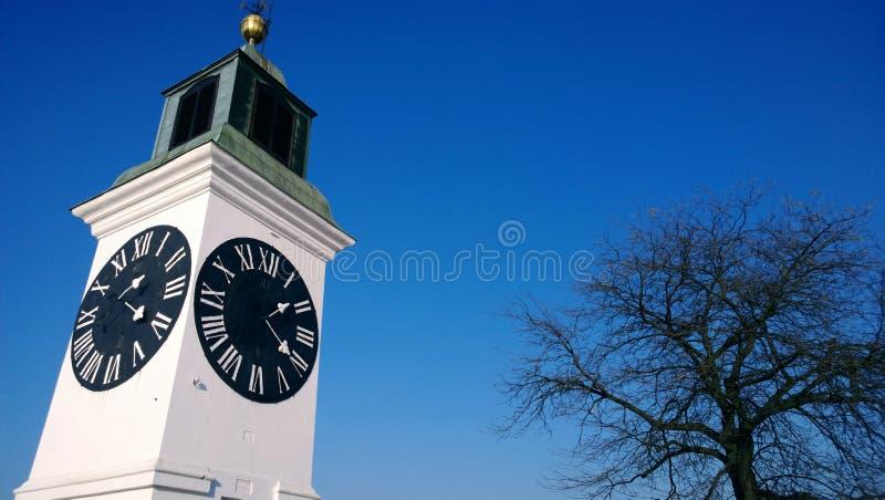 在堡垒的钟楼和没有叶子的树在秋天天在塞尔维亚,市彼得罗瓦拉丁 库存图片