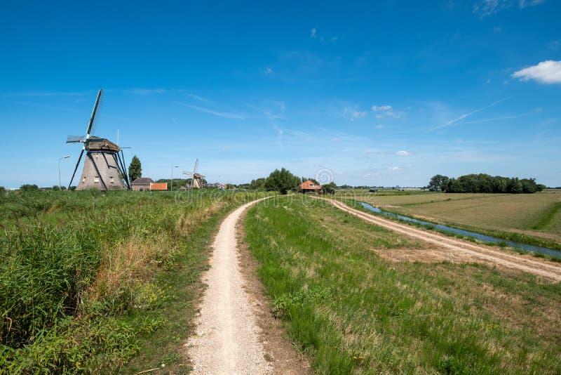 在堤的两台风车沿在Maasland附近的开拓地, Neth 免版税图库摄影