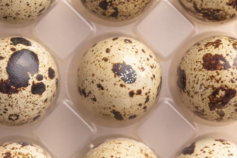 在塑料封装的几个鹌鹑蛋 免版税库存图片