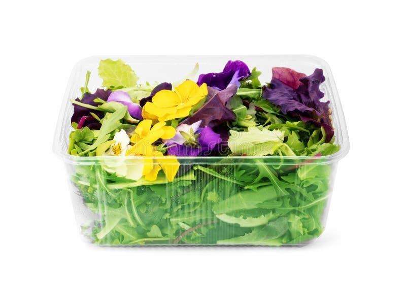 在塑料的新鲜蔬菜沙拉拿走在白色隔绝的碗 免版税库存照片