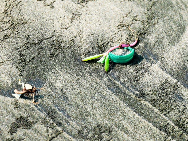 在塑料盖帽的小的水生植物在卡塔赫钠哥伦比亚污秽附近的一个加勒比海滩 免版税库存图片