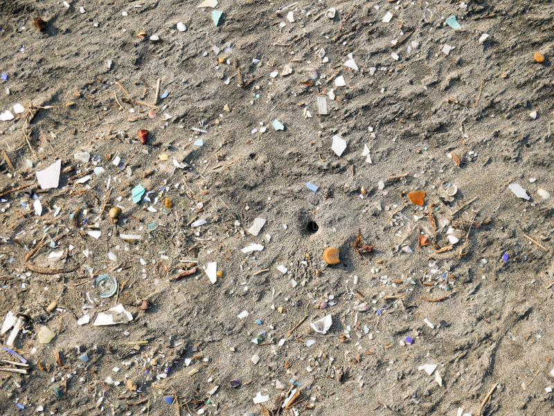 在塑料背景片断围拢的一个加勒比海滩的螃蟹孔  免版税库存照片