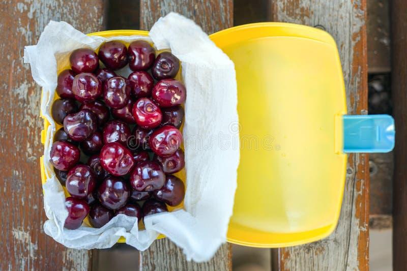 在塑料饭盒oudoors的成熟新鲜的鲜美生物樱桃 有机甜野餐的莓果外带的快的食物 在b的木桌 免版税图库摄影