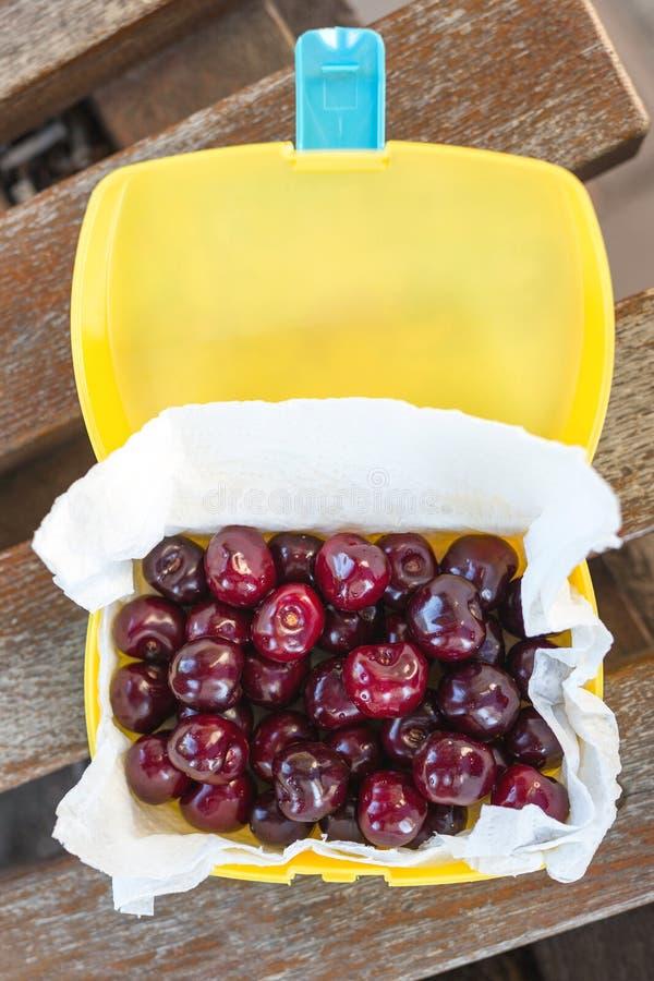 在塑料饭盒oudoors的成熟新鲜的鲜美生物樱桃 有机甜野餐的莓果外带的快的食物 在b的木桌 库存照片