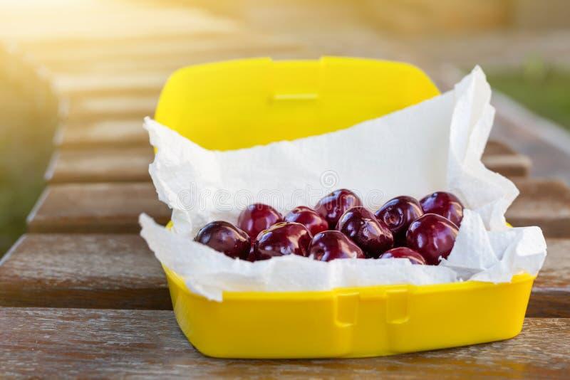 在塑料饭盒oudoors的成熟新鲜的鲜美生物樱桃 有机甜野餐的莓果外带的快的食物 在b的木桌 免版税库存图片