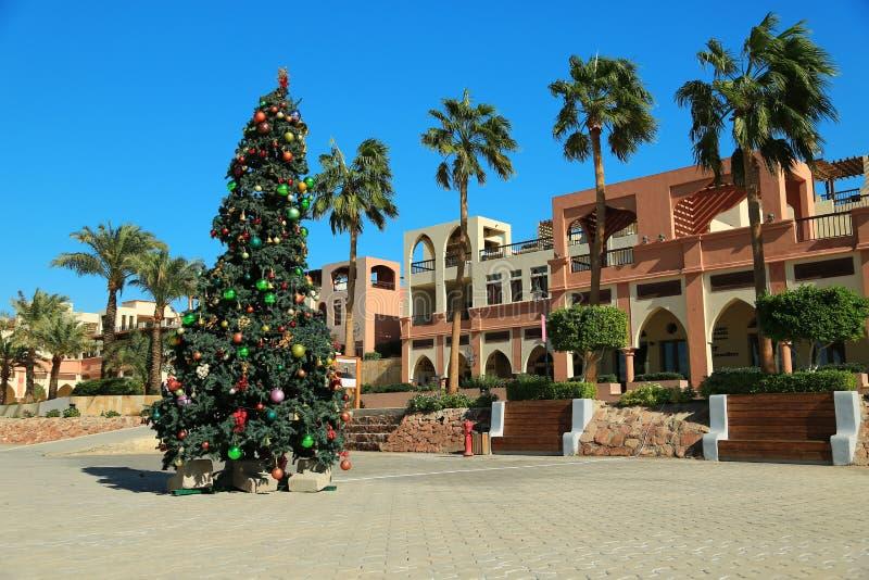 在塔拉海湾手段的圣诞树在亚喀巴市,约旦附近 库存照片