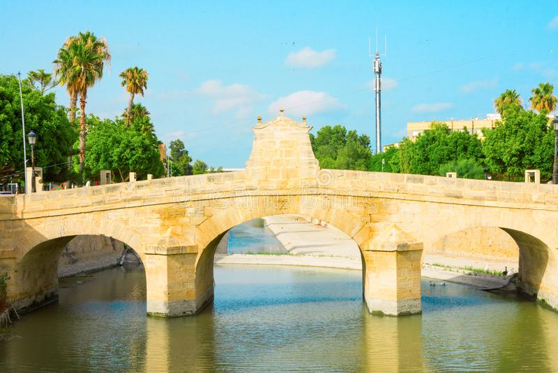在塞古拉河的查尔斯III桥梁在阿利坎特省的西班牙罗哈莱斯 夏天晴天蓝天绿色树反射 库存图片